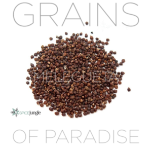 Grains Of Paradise Melegueta
