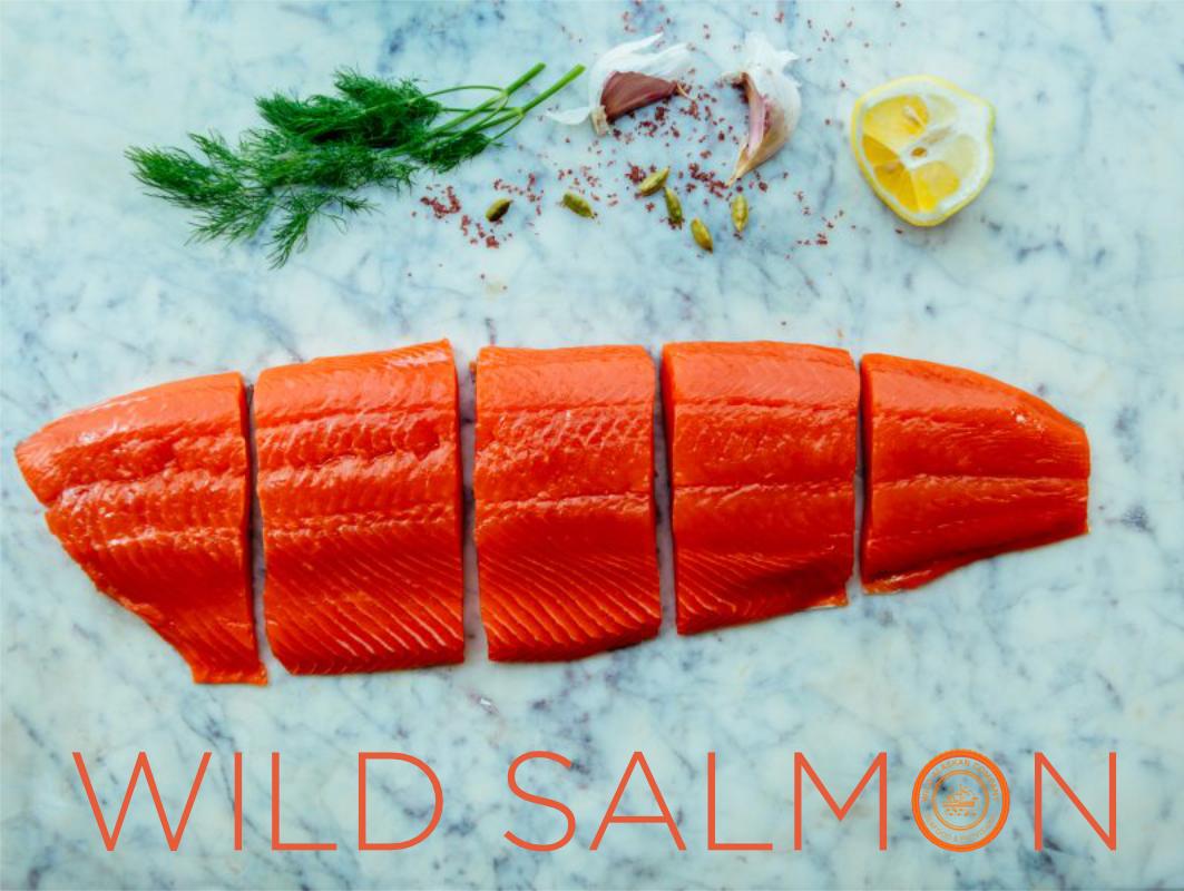 wild salmon - portrait